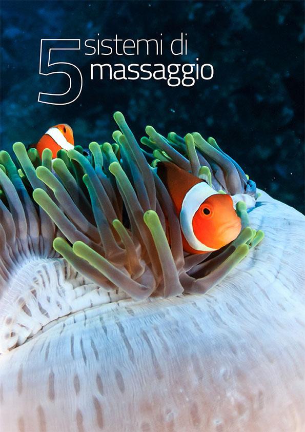 Sistemi di massaggio